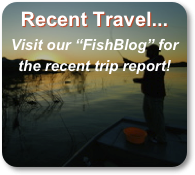 Recent Travel...