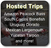 Hosted Trips