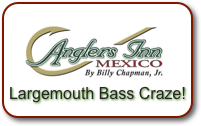 Largemouth Bass Craze!