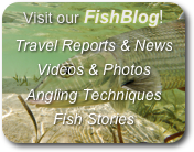 Visit our FishBlog!