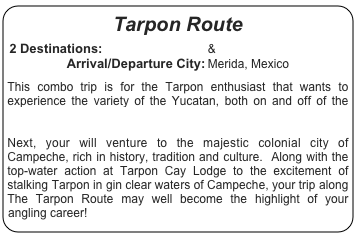 Tarpon Route